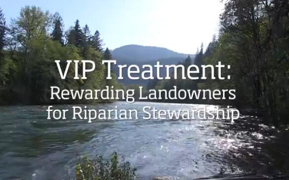 riparian-stewardship